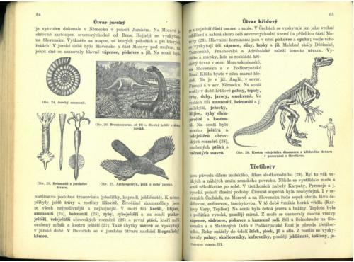 Pastejrik UstrojnaChemieTelovedaZdravovedaGeologie 1936 Stránka 34