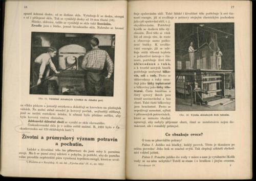 Pastejrik Prirodozpyt Technologie ProJednorocniUcebneKursy IV 1933 Stránka 12