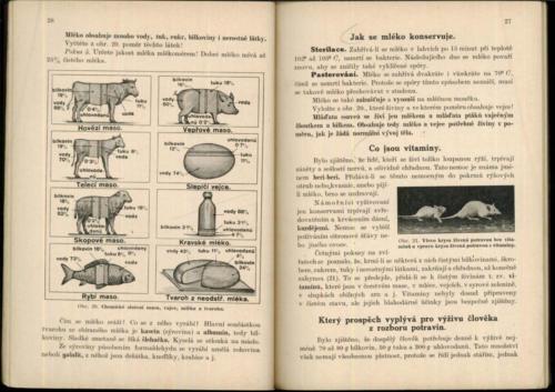 Pastejrik Prirodozpyt Technologie ProJednorocniUcebneKursy IV 1933 Stránka 17