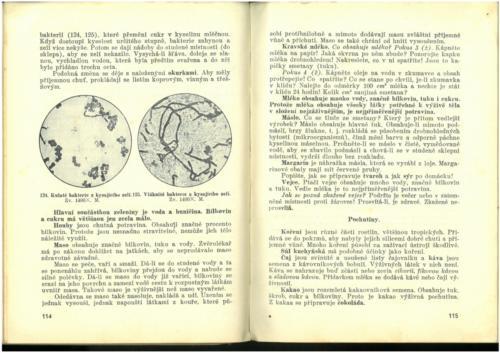 Pastejrik PrirodovedaProObecneSkoly(SestySedmyAOsmyRokSkolni) 1937 Stránka 059