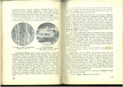 Pastejrik PrirodovedaProObecneSkoly(SestySedmyAOsmyRokSkolni) 1937 Stránka 077