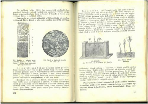 Pastejrik PrirodovedaProObecneSkoly(SestySedmyAOsmyRokSkolni) 1937 Stránka 087