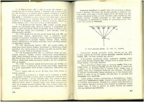 Pastejrik PrirodovedaProObecneSkoly(SestySedmyAOsmyRokSkolni) 1937 Stránka 110