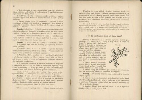 Hofmann-Leminger Prirodozpyt ProMestanskeSkolyChlapecke III 1906 Stránka 24