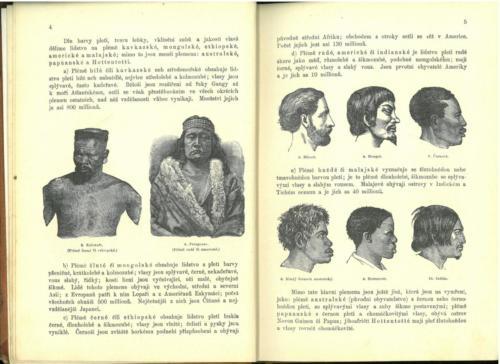 Pokorny-Rosicky PrirodopisProSkolyMestanske TretiStupen 1899 Stránka 08