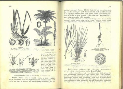 Pokorny-Rosicky PrirodopisProSkolyMestanske TretiStupen 1899 Stránka 68